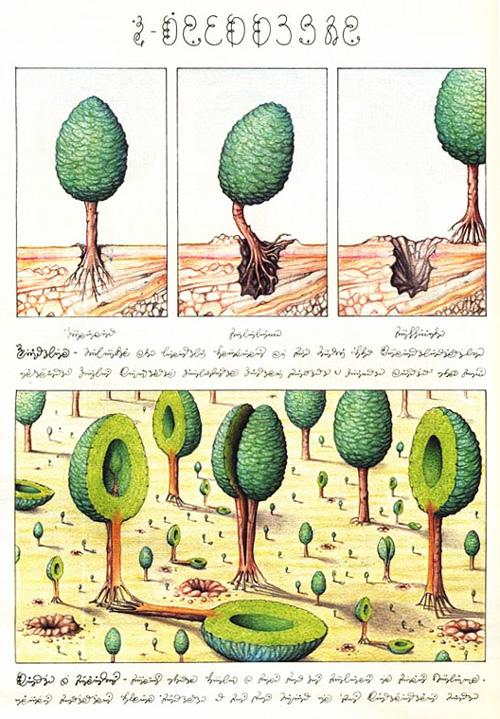 codexseraphinianus2