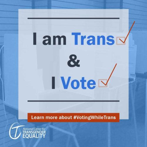 Voting While Trans